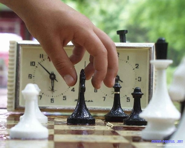 Картинки по запросу фото играют шахматы-блиц